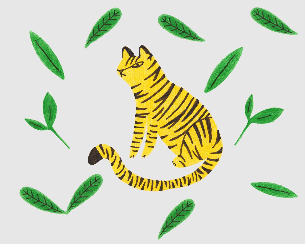 L'enfant tigre, Une histoire pour enfant à lire sur Goupili